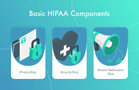 What are the Five Main Components of HIPAA?